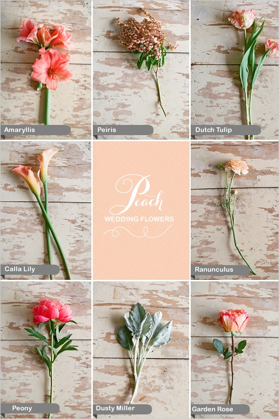 Wedding Flowers Types Flowers Chart Wall Chart Flowers Wedding Flower