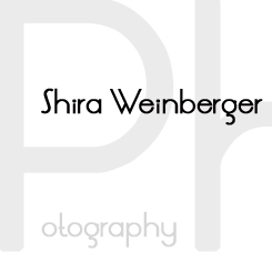 NYC Wedding Photography Blog logo